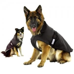 Abrigo perros grandes