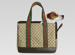 Bolso para llevar perro
