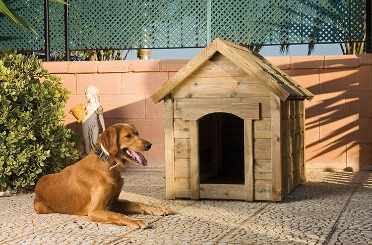Casetas para perros casas para perros accesorios de perros for Casetas para perros bricomart