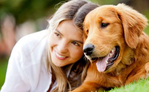 Guía de perros