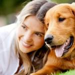 como cuidar un perro