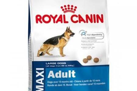 Dieta seca para perros Royal Canin