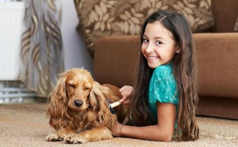 Técnicas de cepillado para perros
