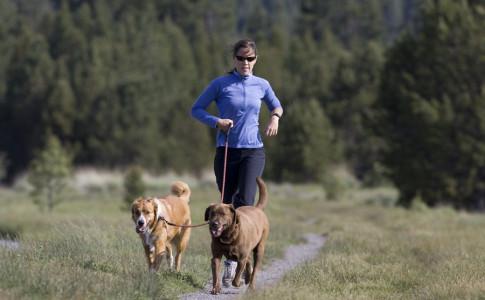 correr-perros