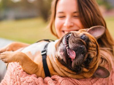 En qué son mejores los perros que las personas