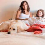 ¿Es bueno dormir con tu perro?