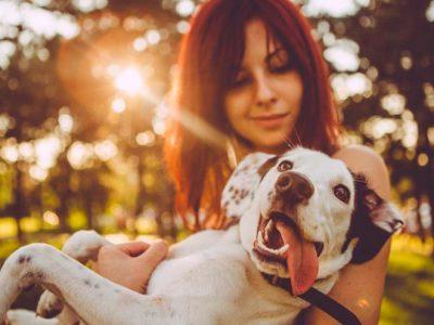 ¿Por qué el perro es el mejor amigo del hombre?