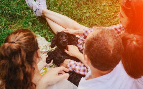 ¿Qué saben los perros de los humanos?