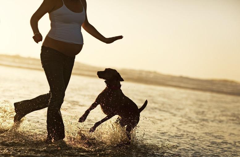 mascotas-embarazo