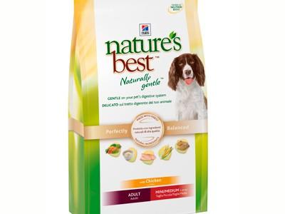 Alimentación ecológica para perros