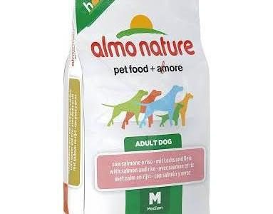 Comida seca para perros Holistic