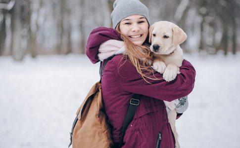 Accesorios para viajar a un camping con tu perro