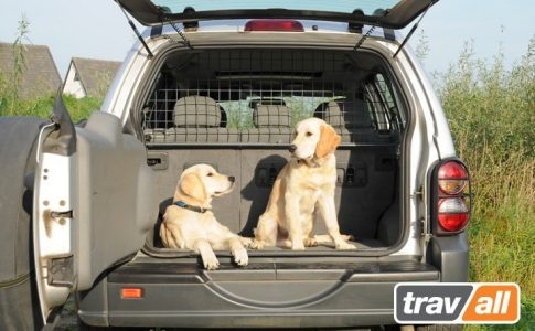 Seguridad en los viajes con tu perro